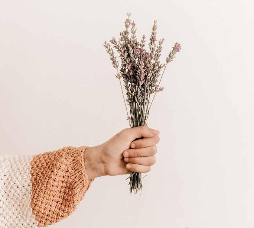lavender as natural sleep supplement